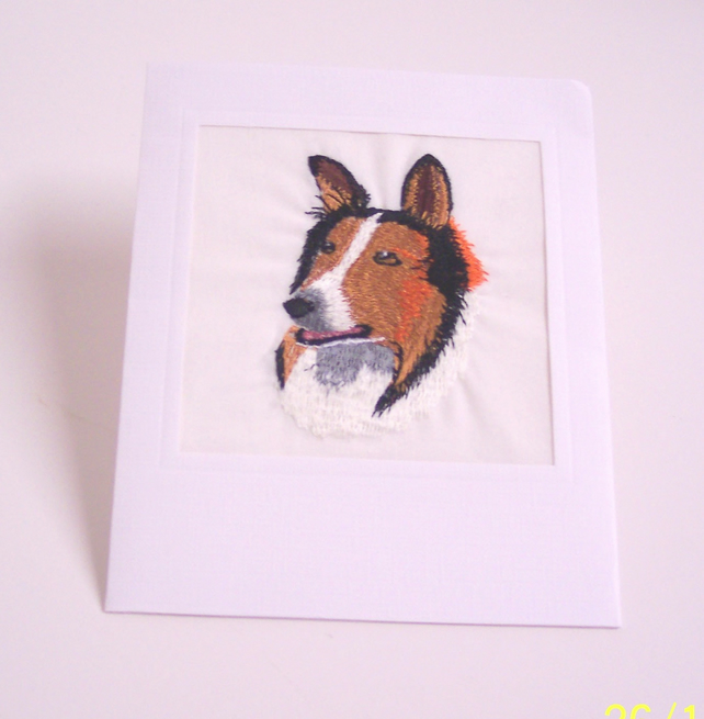 Cards - Collie Dog