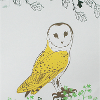 Barn Owl - A5 mini print