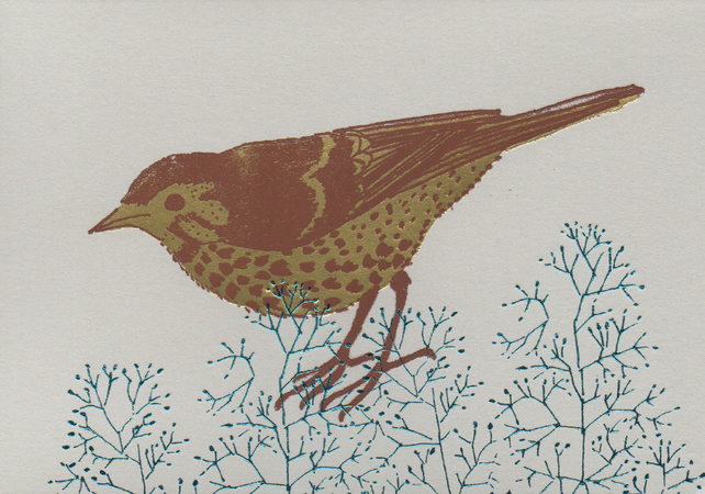Song Thrush - Greetings Card
