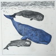 3 Sperm Whales