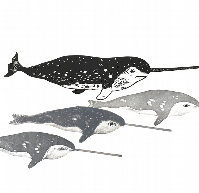 Pod of Narwhals
