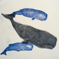 Three Sperm Whales - Drypoint Print