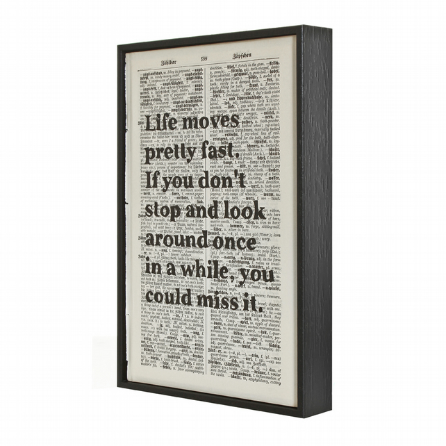Inspirational Quote Life Moves Pretty Fast Ferris Bueller framed art