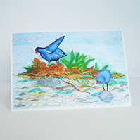 Moorhens Greetings Card