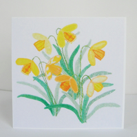 Daffodils Greetings Card - Cream