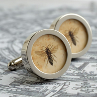 Vintage Bee Illustration Cufflinks