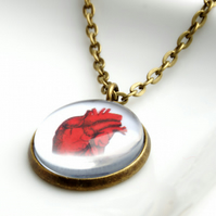 Red Anatomical Heart Pendant Necklace