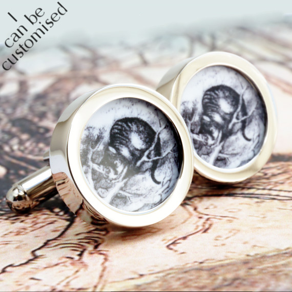The Cheshire Cat Cufflinks from Alice in Wonderland