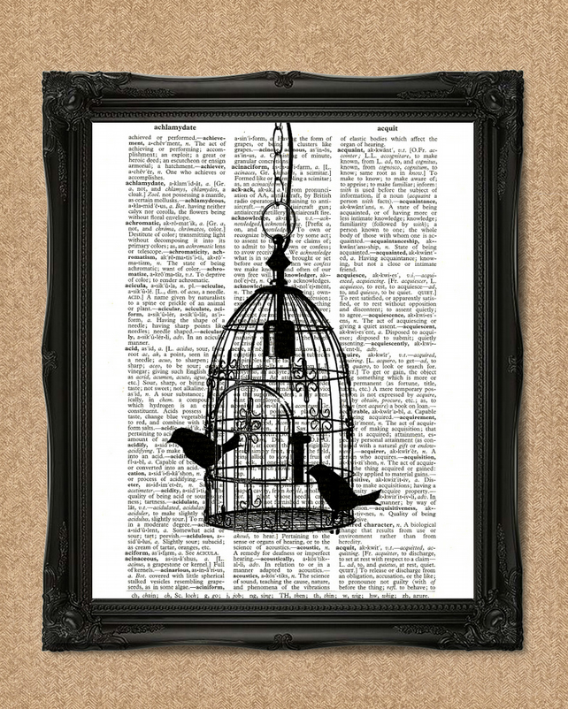 BIRDCAGE DICTIONARY PRINT Pair of two birds sitting in a birdcage book art A017D