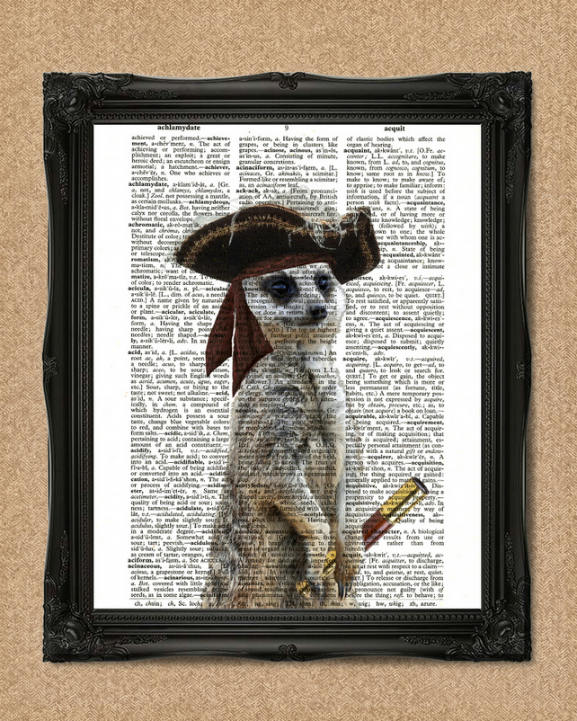 PIRATE MEERKAT DICTIONARY PRINT in three corner hat A115D