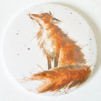 Fox Pocket Mirror
