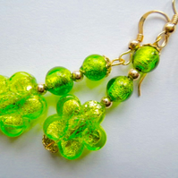 Lime green Murano glass flower earrings with gold filled hooks.