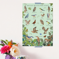 British Woodland Birds Poster - Field Guide Poster - A3 sized