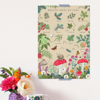 British Trees By Leaf Poster - Field Guide Poster - A3 sized
