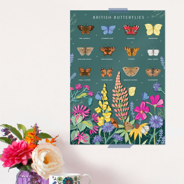British ButterfliesPoster - Field Guide Poster - A3 sized
