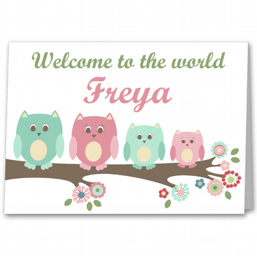 Personalised Owl New Baby Girl , Birth Congratulations Card