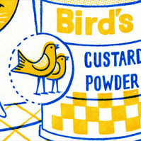 Custard the Cat - Limited Edition Gocco Screenprint