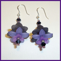 Black Nightshade  Earrings