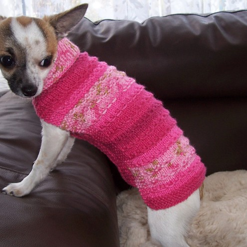 small hand knitted dog coat/jumper chihuahua,to... - Folksy