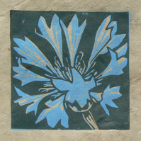 Cornflower mini linocut print