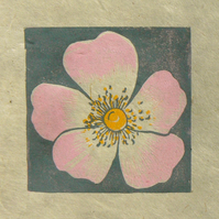 Dog Rose mini linocut print