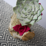 Decorative Birch Log Felt Succulent Garden Grey and Pink