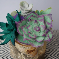 Felt Faux Succulent Garden on Birch Log