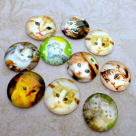 pack of 10 - Cats and Kittens Cabochons Mix 20mm Cabochon