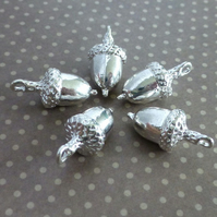 Pack of 10 - Charm Acorn Silver Colour