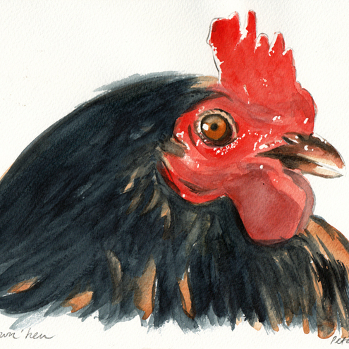 Black and brown hen, original painting