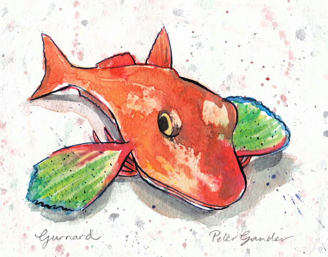 Gurnard fish painting