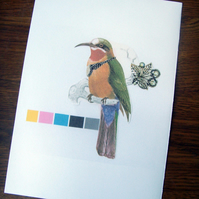 CMYK Bee-eater Bird Collage Print (A5 Colour)