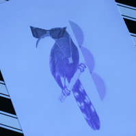 Purple Ombre Bird Collage Print (A5)