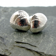 Sterling Silver Medium Cockle Shell Studs