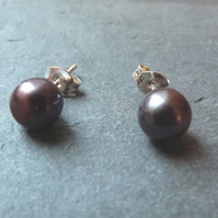 Freshwater pearl and sterling silver studs - 7.5mm grey peacock pearls