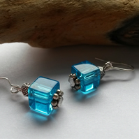 Earrings Blue Doves