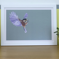 Bird in Flight Picture: Limited Edition A3 Digital Art Print, light background