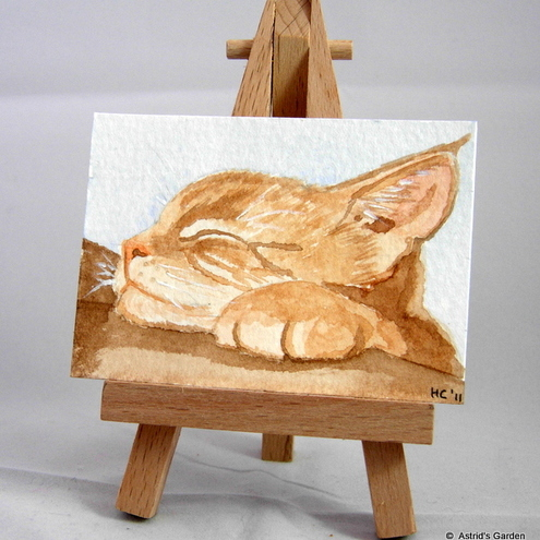"ACEO ""Cat snoozing"""