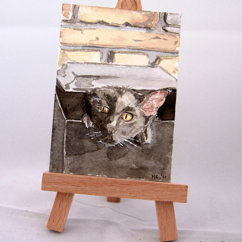 "ACEO ""Cat in a letterbox"""