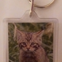 Scottish Wildcat keyring