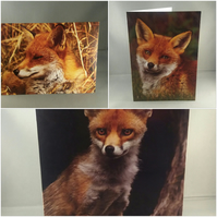 Set of 3 Red Fox Greeting Cards