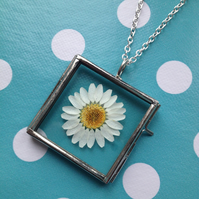 Real Flower Necklace Daisy
