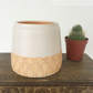 Handthrown ceramic pot plant pot cactus pot pottery retro design orange glaze