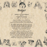 Personalised Dog Cat or Horse Personalised Dog Breed Meaning or Poem Print