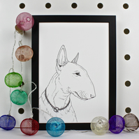 Bull Terrier Dog Portrait