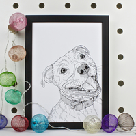 Staffordshire Bull Terrier Dog Portrait Print