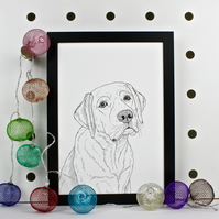 Labrador Dog Portrait Print