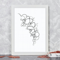 Orchid Flower Line Drawing Print