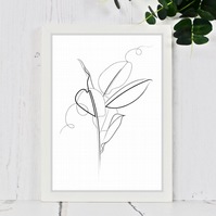 Rubber Plant Line Drawing Print