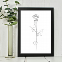 Single Rose Line Drawing Print